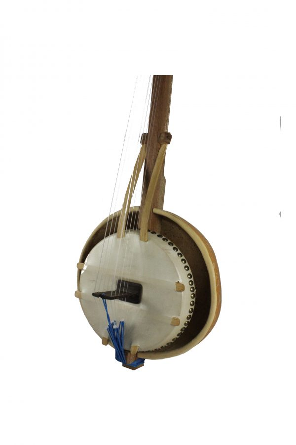 N'goni instrument de musique africain à corde